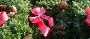Wreaths feature image